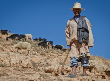 Mojo Trail Diary, Morocco